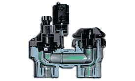 Anti-Siphon Valve - 3/4 in. FPT Threads